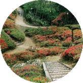 松川町 台城城址公園